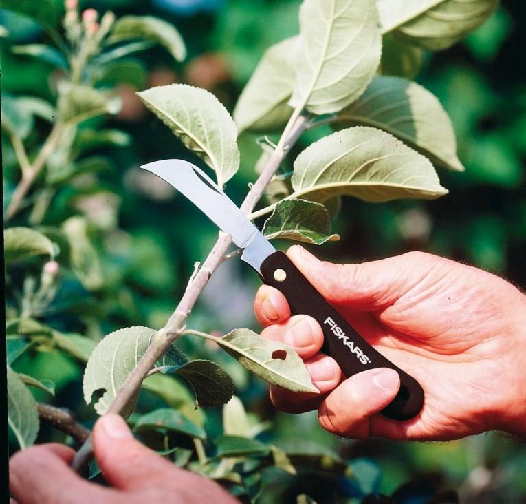 coltello innesto a roncola