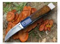 Coltello per funghi ? Ecco i migliori coltelli per andare a funghi